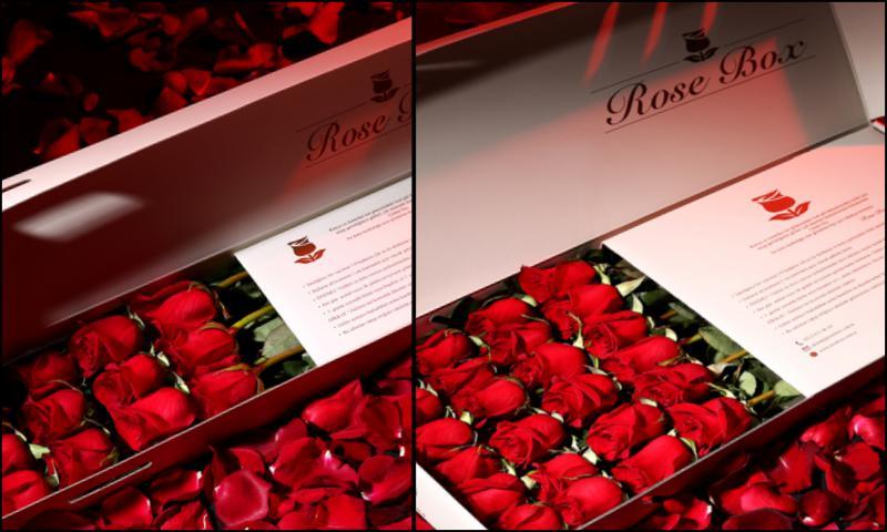 Dünyanın En Zarif Gülleri İle Sevdikleriniz Mutlu Edin
